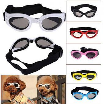 lentes para perros mexico